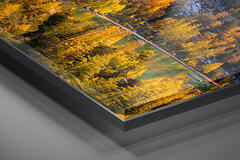Luxury Series | TruLife® Acrylic Print