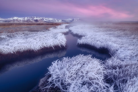 Oregon, Alvord Desert, Borax Hot Springs, Winter, Sunrise, hoarfrost, ice, cold, snow, Steens Mountain, steam, grass