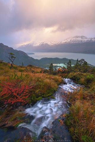 Patagonia, Chile, stream, glacier, sea, sunset, fjords, autumn, lenga, trees,