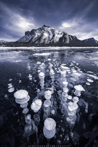 Abraham, Lake, Alberta, Canada, ice, bubbles, winter, methane, Canadian Rockies,
