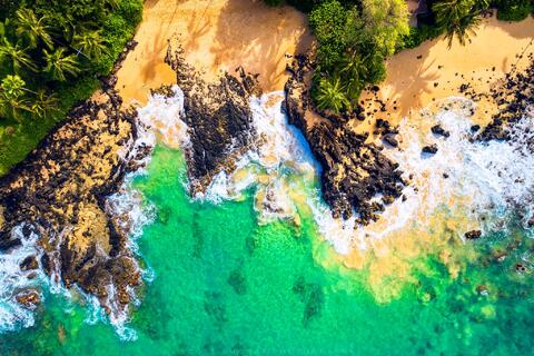 An aerial view of an ocean reef ecosystem near a small beach cove in Maui, Hawaii.