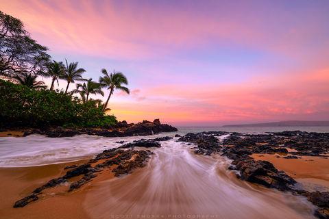 Hawaii, Maui, tropical, sunrise, beach, waves, coconut, palm, trees