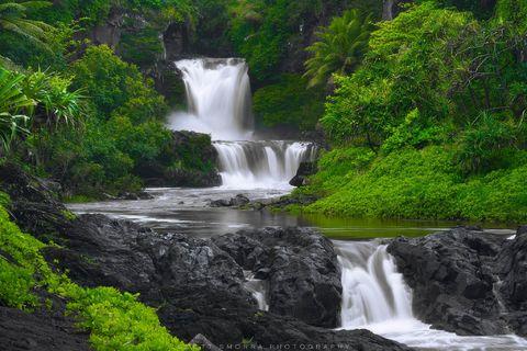 Hawaii, Maui, Haleakala National Park, Pools of Oheo, stream, swimming, tropical, vegetation,