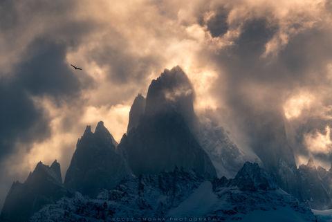 Patagonia, Argentina, Aguaja, Poincenot, Andean, Condor,