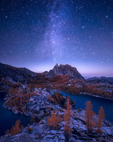 Enchantments, Washington, Cascades, night, Western Larch, trees, Larix occidentalis, fall, stars, Alpine, Lakes, Wilderness, Area