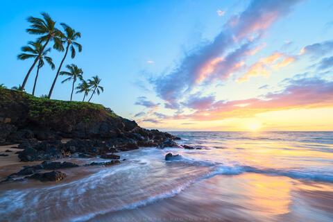 oothing sunset light illuminates waves at coconut palm trees at Ulua Beach in Maui, Hawaii.