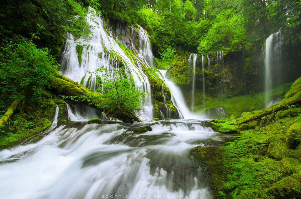 Washington, Columbia River Gorge, Waterfall, spring, green,