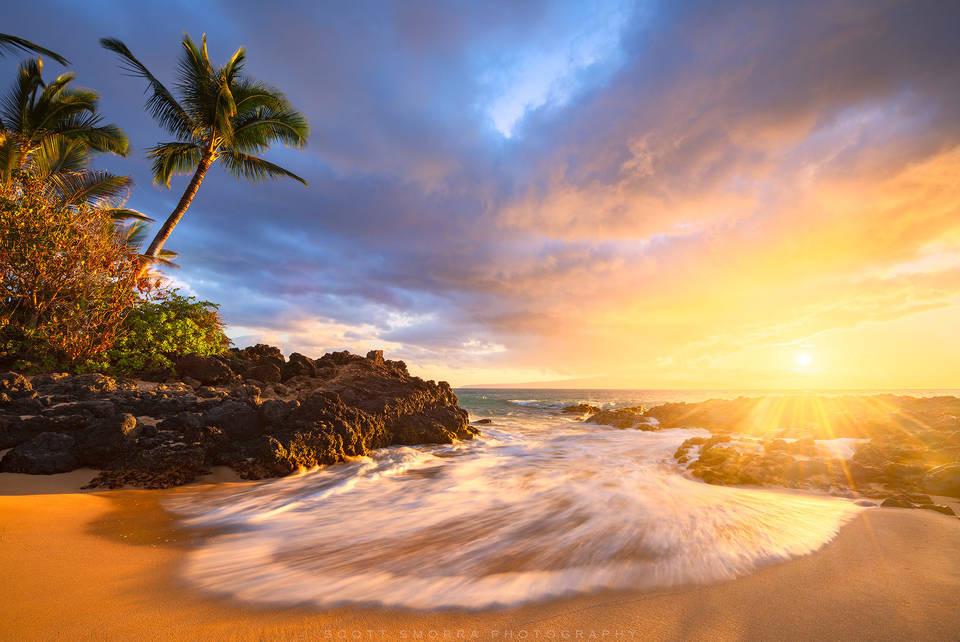 Hawaii, Maui, Paradise, sunset, light, coconut, palm, tree, beach, tropical, islands, wedding beach, secret beach