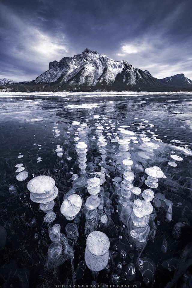 Abraham, Lake, Alberta, Canada, ice, bubbles, winter, methane, Canadian Rockies,
