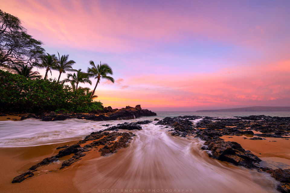 Hawaii, Maui, tropical, sunrise, beach, waves, coconut, palm, trees