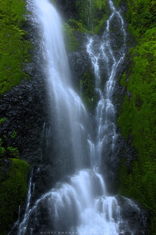Oregon, Columbia River, Gorge, waterfall, spring, moss,
