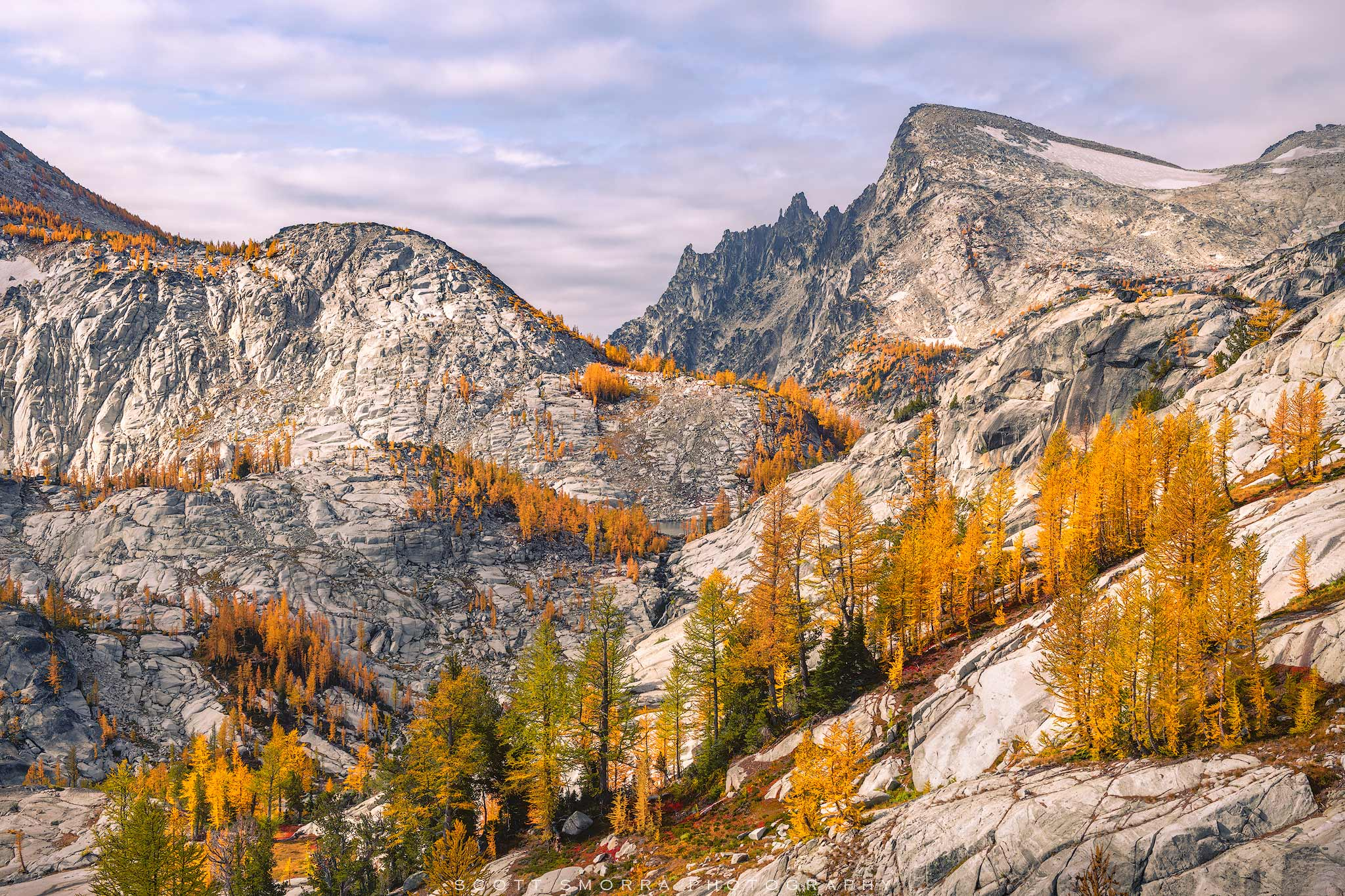 Enchantments, Washington, Cascades, Western Larch, trees, Larix occidentalis, Alpine, Lakes, Wilderness, Area, fall, color, photo