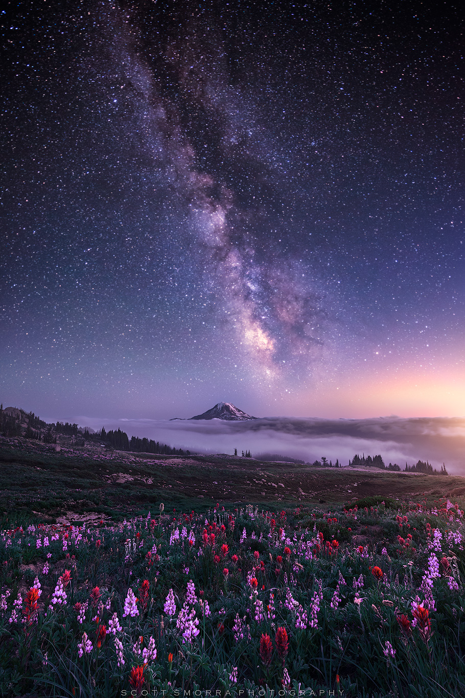 Fine Art Limited Edition of 100 - The Milky Way and millions of other stars above Mt Adams and a field of lupine and paintbrush...