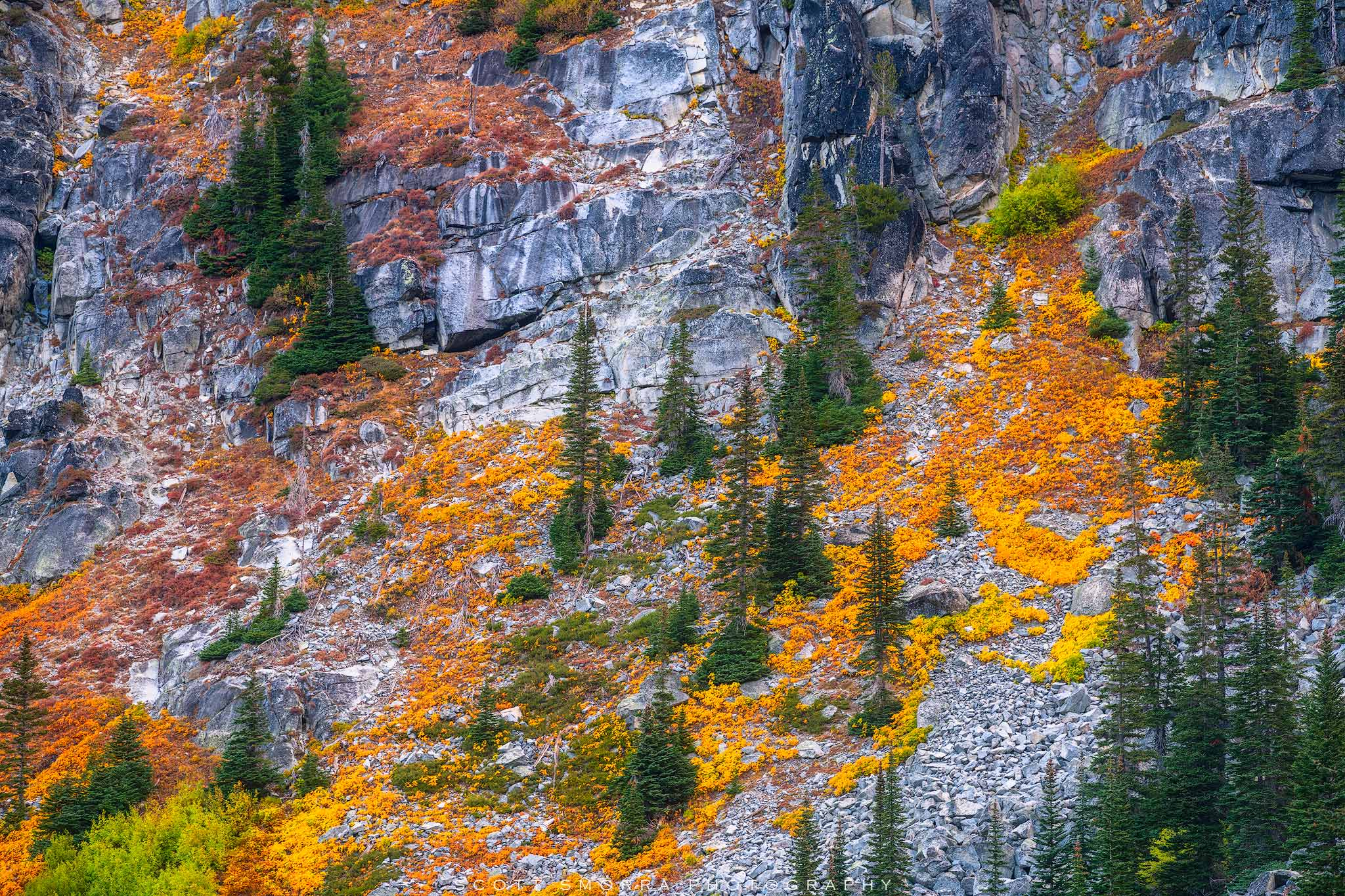 Enchantments, Washington, Cascades, vine, maples, Alpine, Lakes, Wilderness, Area, fall, color,, photo