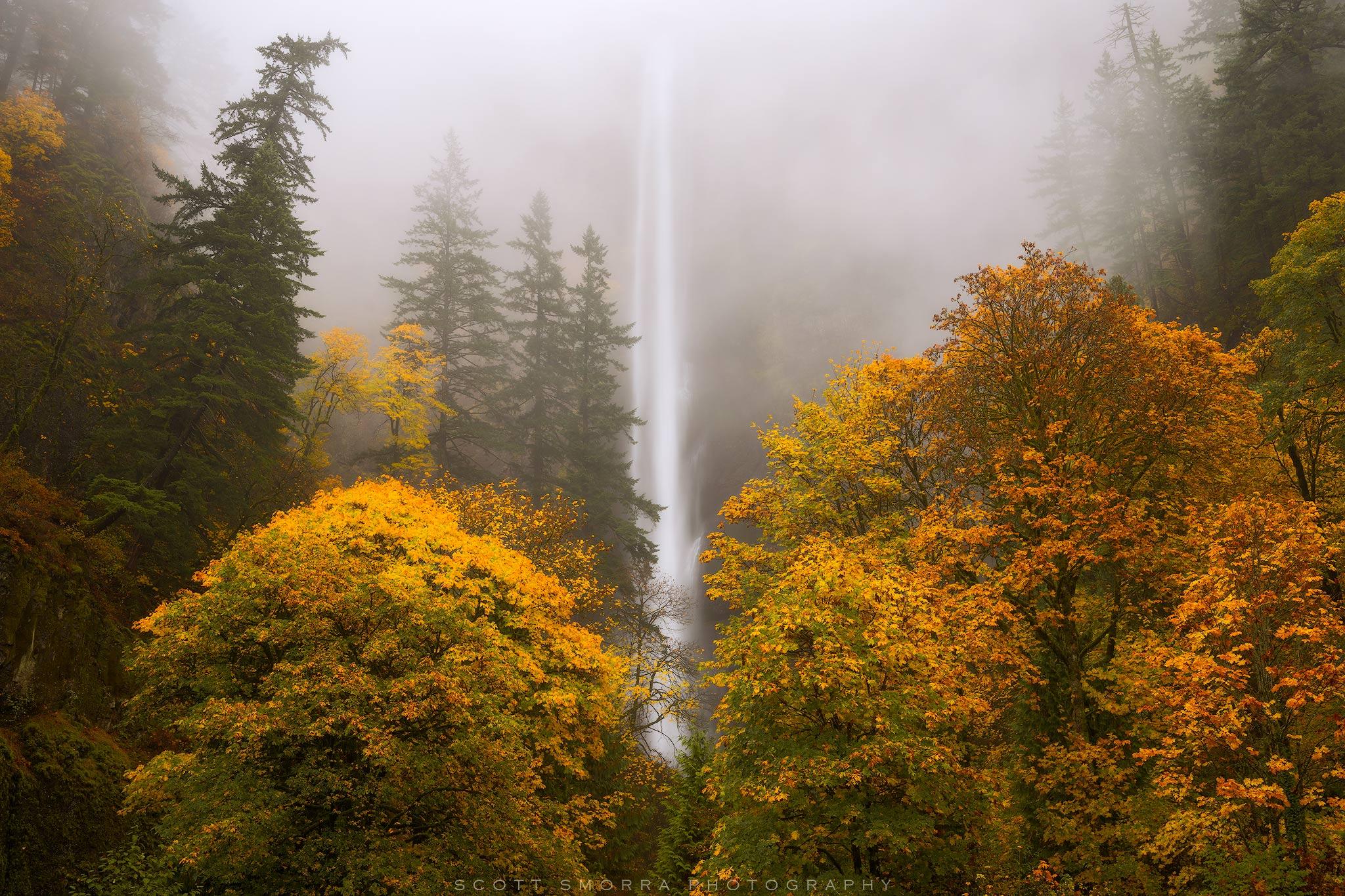 Oregon, Columbia River Gorge, Multnomah Falls, waterfall, fall, colors, autumn, fog, mist, broad leaf maple,, photo