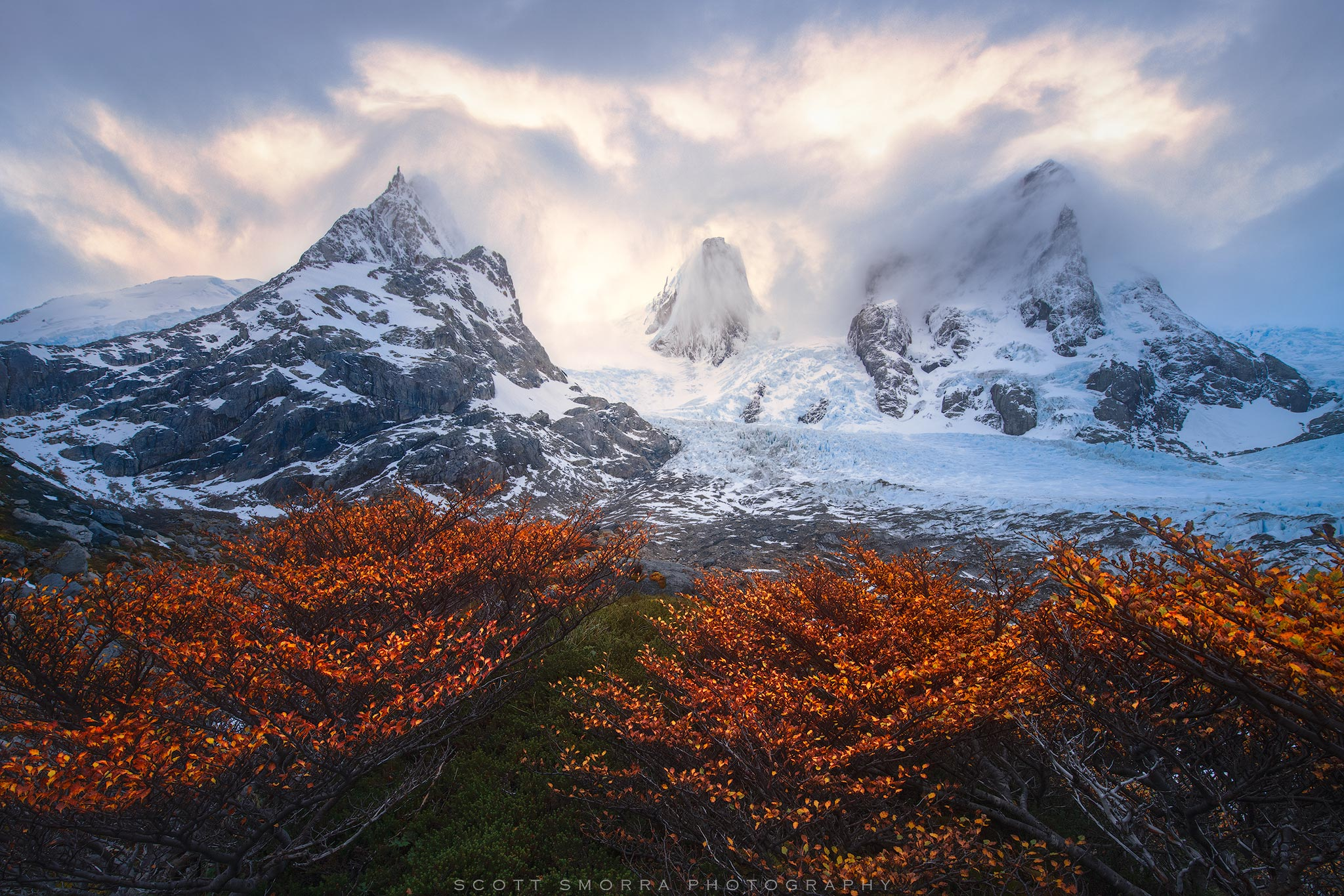 Fine Art Limited Edition of 50 - Small alpine Lenga trees frame a massive glacier and three peaks in the fjords of Patagonian...
