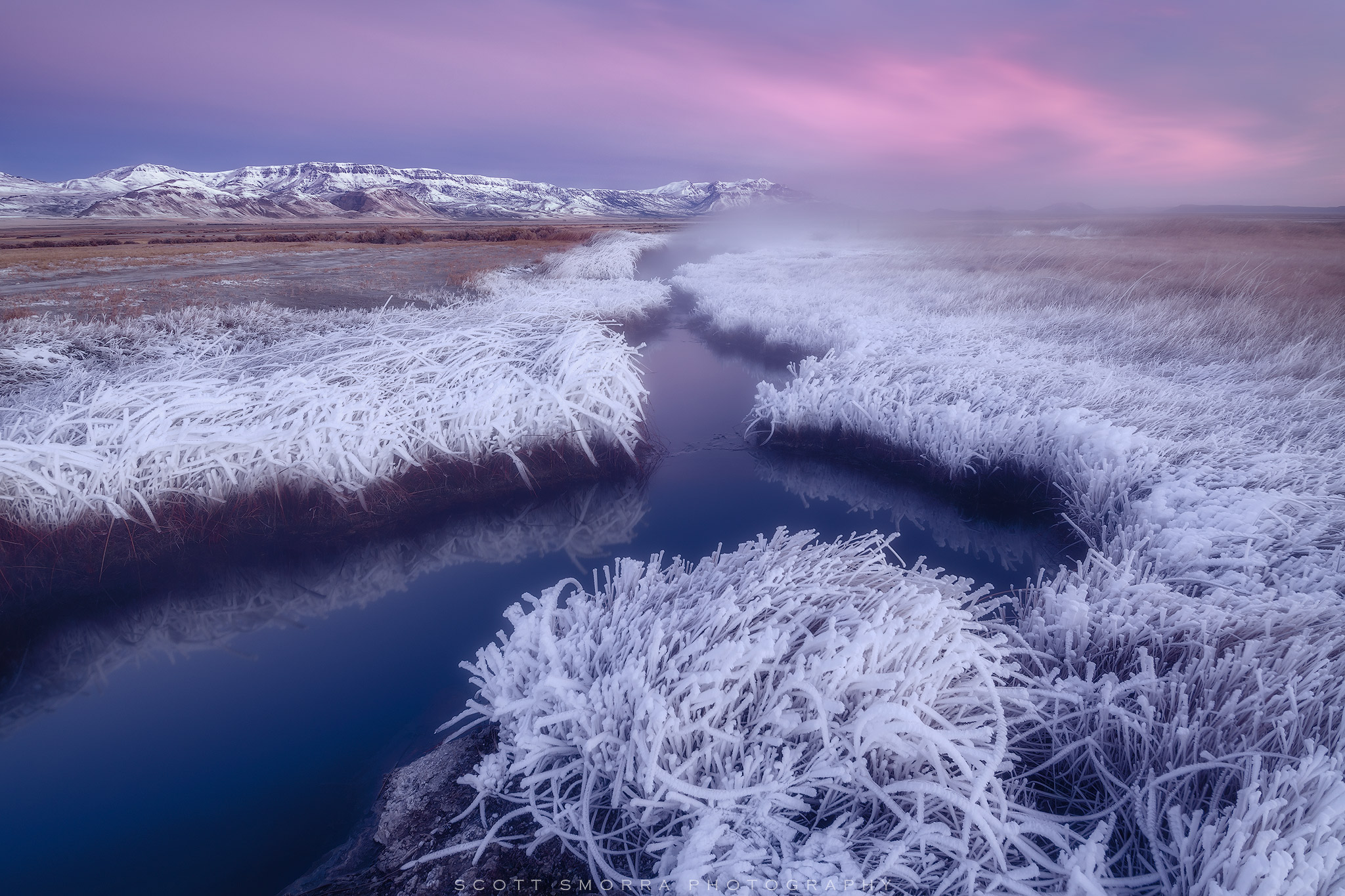 Oregon, Alvord Desert, Borax Hot Springs, Winter, Sunrise, hoarfrost, ice, cold, snow, Steens Mountain, steam, grass, photo