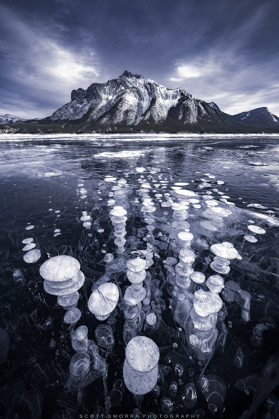 Abraham, Lake, Alberta, Canada, ice, bubbles, winter, methane, Canadian Rockies, , photo