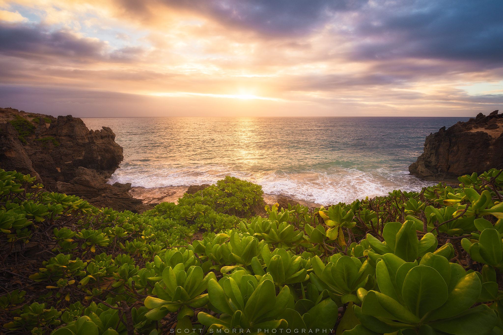 Fine Art Limited Edition of 50 - A gorgeous tropical sunrise over a stand of Naupaka and lithified cliffs near Poipu, Kauai...