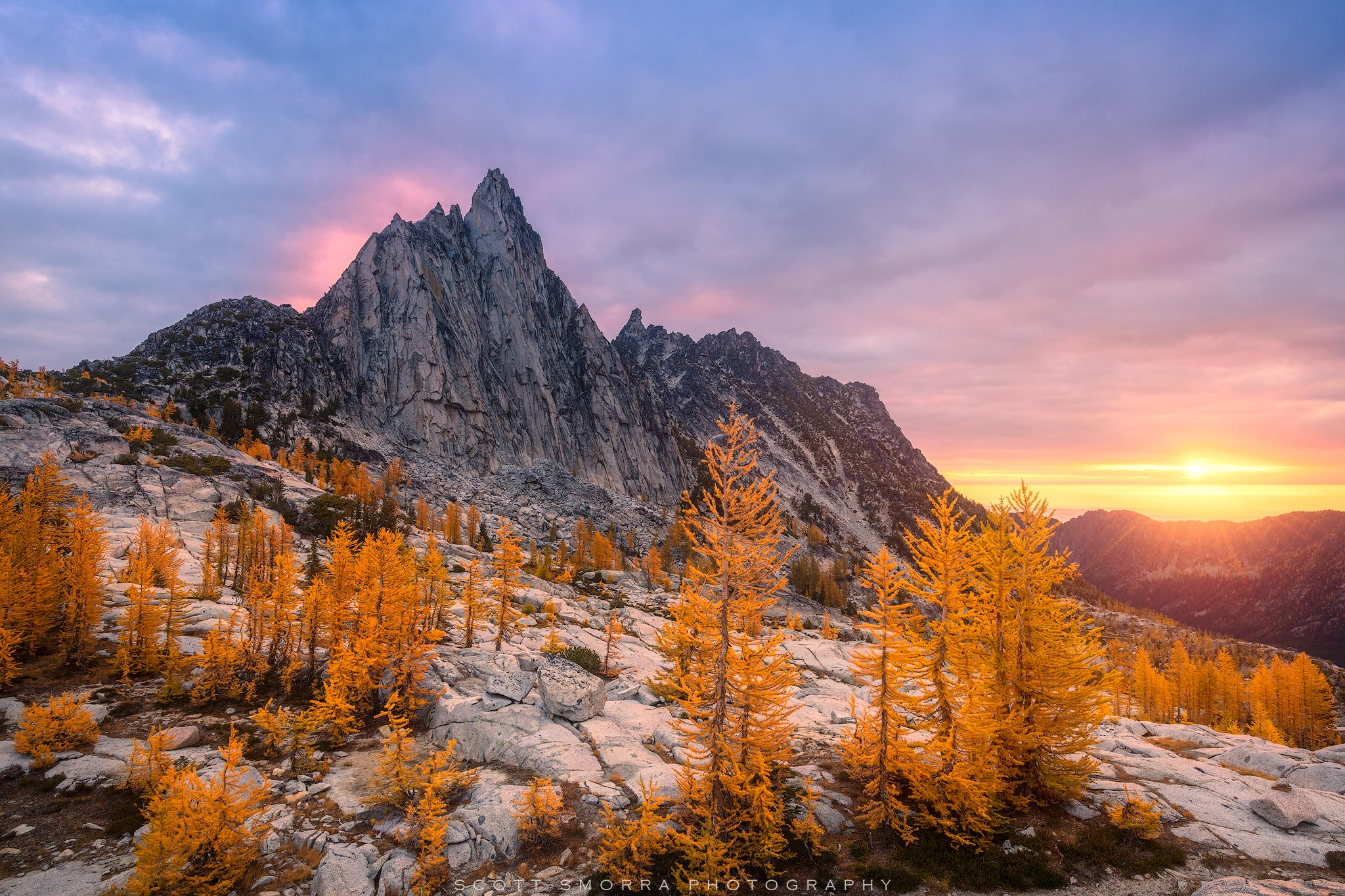 Fine Art Limited Edition of 100 - Sunrise light illuminates a stand of Western Larch (Larix occidentalis) trees below Prusik...